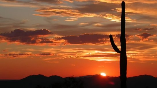 В Аризоне побит державшийся 112 лет температурный рекорд