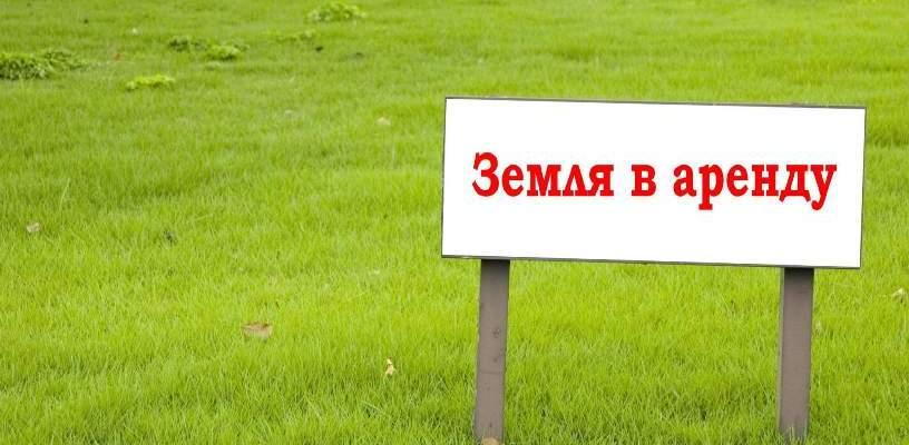 Парыгина предложила предпринимателям слать письма про рассрочку платы за аренду земли