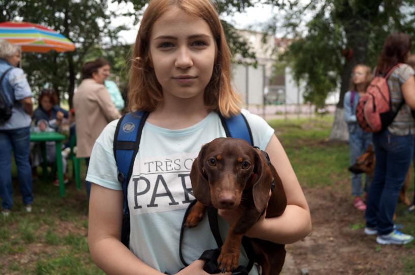 Омские собаки собрали более ста тысяч на лечение ребенка. ФОТО