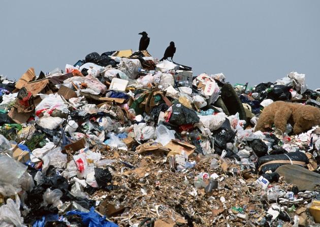 В Загородном не разрешили строить мусоросортировочную станцию