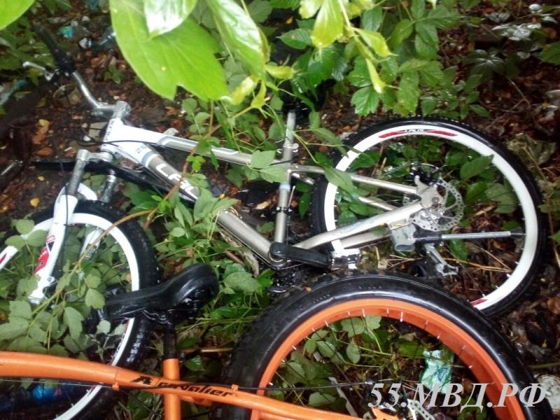 Убийца выкрал из омского парка 4 дорогих велосипеда