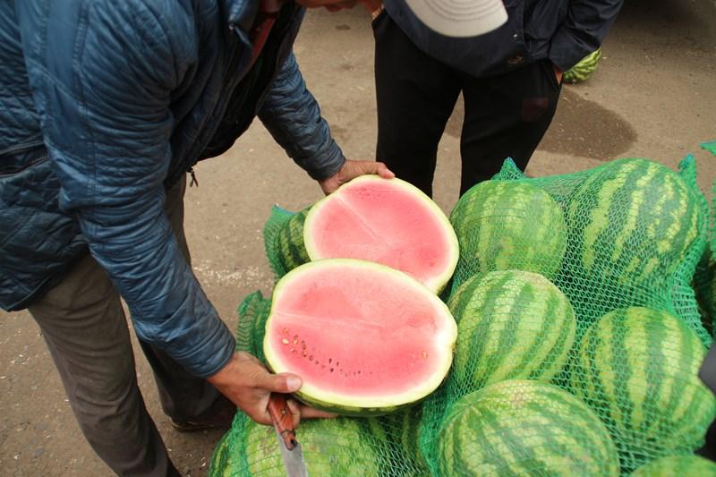 В Омск не пустили 40 тонн арбузов