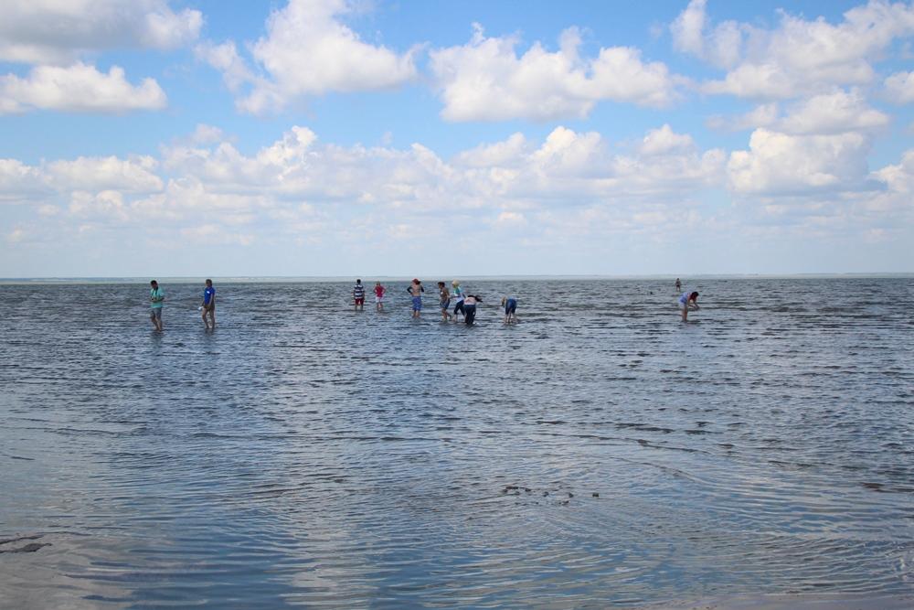 За незаконную добычу рачков на озере Эбейты будут наказывать еще жестче