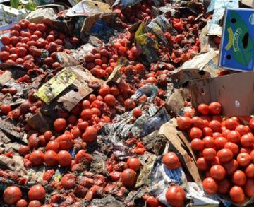 Скоро в России будут уничтожать еще и продукты, не вписывающиеся в нормы