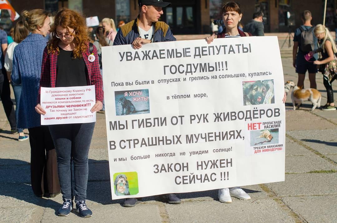 На Театральной площади Омска собрались зоозащитники