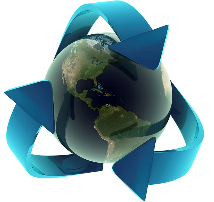Профессиональная утилизация биологических отходов