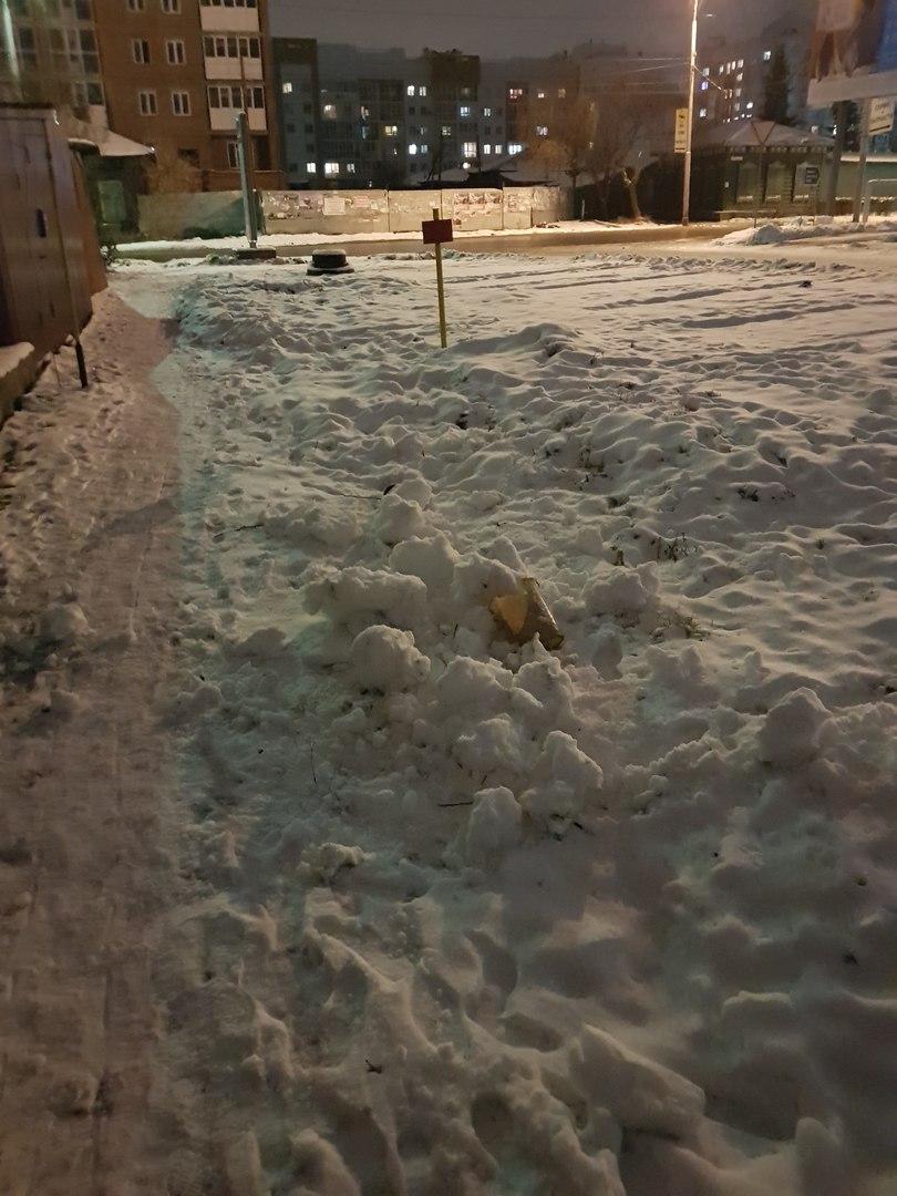 Омич ищет неизвестных, уничтоживших четырех снеговиков