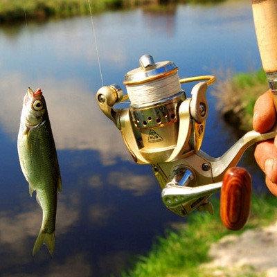 Прекрасный выбор снастей для рыбалки