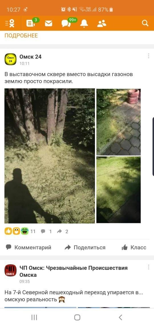 Гидропосев на «Флоре» омичи перепутали с покраской газона